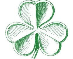 shamrock-hand-drawn for web