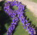 Employees of United Services gathered together to form a purple ribbon to mark Domestic Violence Awareness Month!